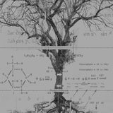 Tree Schematics T-Shirt- Crawlspace Studios