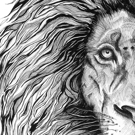 Lion Illustration by Co-Founder Emily