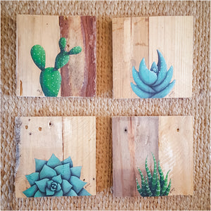 Succulents on Pallet Wood