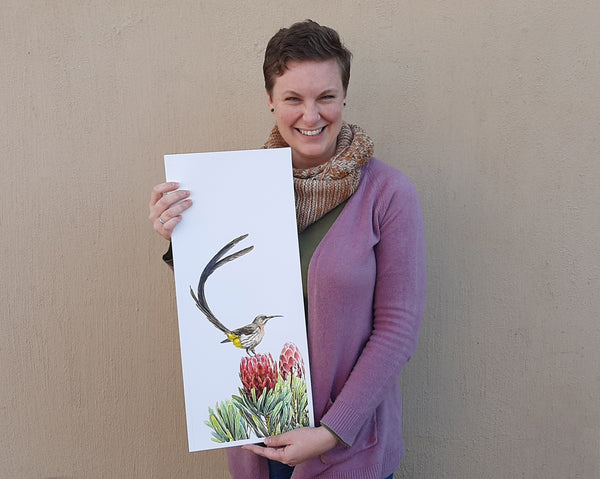 cape town watercolour wildlife artist the happy struggling artist