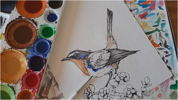 work in progress watercolour and pen bird