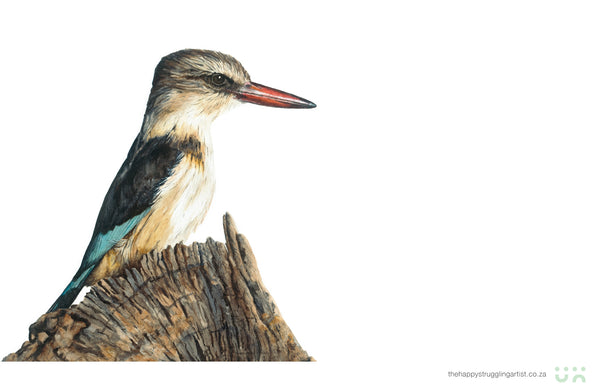 brown hooded kingfisher watercolour painting by the happy struggling artist