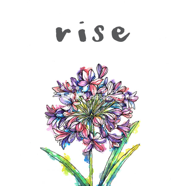 rise agapanthus design the happy struggling artist