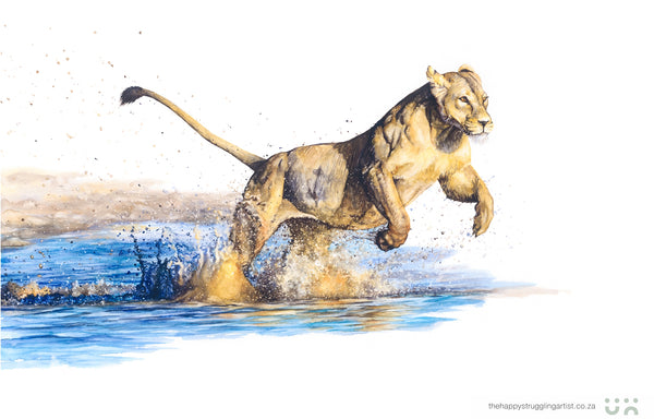 splash lioness running through water original watercolour painting