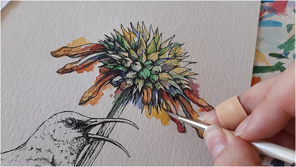 painting a watercolour sunbird and flower