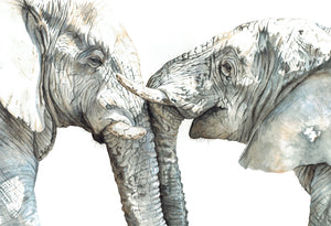 wildlife artist south africa big five