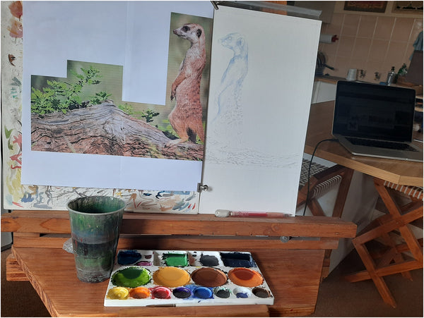 meerkat watercolour work in progress