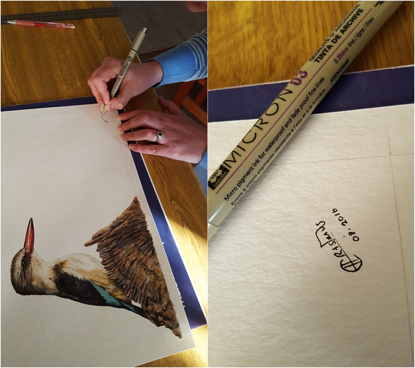 brown hooded kingfisher watercolour painting