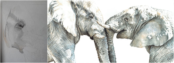 before and after of watercolour elephant painting