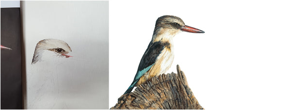 before and after of watercolour brown-hooded kingfisher painting