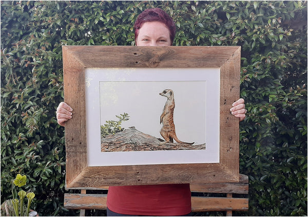 original watercolour meerkat painting by the happy struggling artist