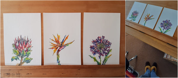 watercolour and pen south african flowers downloadable wall art
