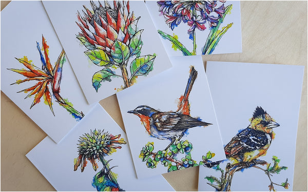 south african greeting cards with birds and flowers
