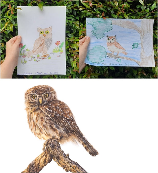 childhood drawing of owl the happy struggling artist