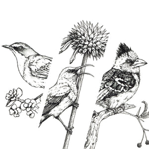 Monochrome Downloadable Wall Art: Set of 3 SA Birds