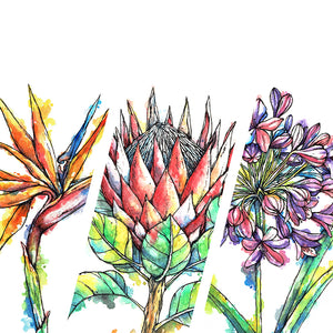 Downloadable Wall Art: Set of 3 SA Flowers