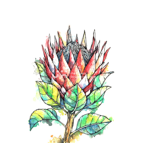 King Protea Downloadable Wall Art