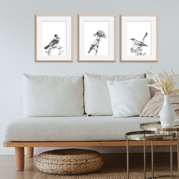 Monochrome Cape Robin-Chat Downloadable Wall Art