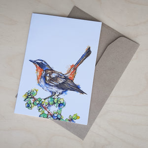 Greeting Card: Cape Robin-Chat