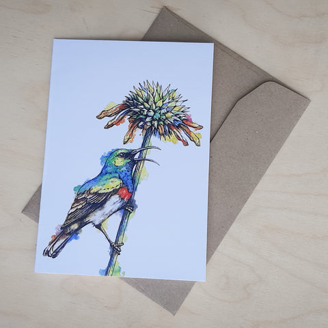 Greeting Card: Sunbird