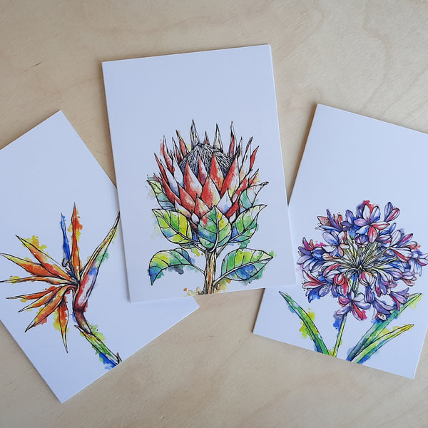 Greeting Cards: 3-Pack