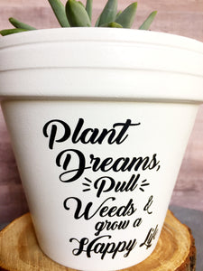 Plant Dreams Pull Weeds and Grow a Happy Life - Plant Pun -Gift for Gardner - Wedding Gift - Succulent Gift- Knox Pots - Knox Pot- Plant Pun