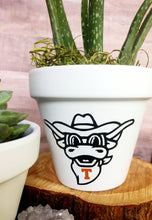 Load image into Gallery viewer, Bevo Flower Pot