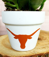 Load image into Gallery viewer, Longhorn Pot