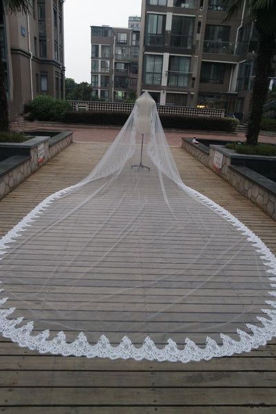 Tulle Long Veil with Appliques V0002