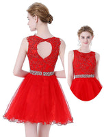 Short Tulle Appliques Homecoming Dress with Beadings Custom Made Cute Short Cocktail Party Dress Fashion Beaded Short Open Back School Dance Dresses Sweet 16th Dress HD144