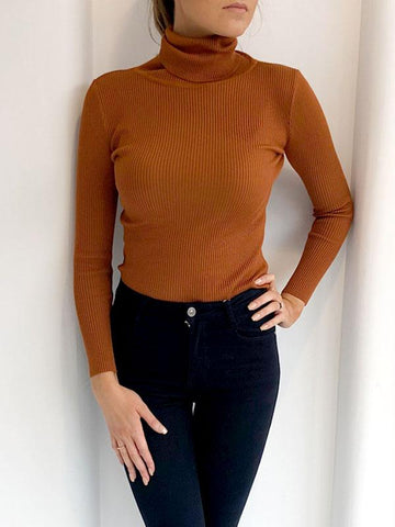 Rust Ribbed Polo Neck Top