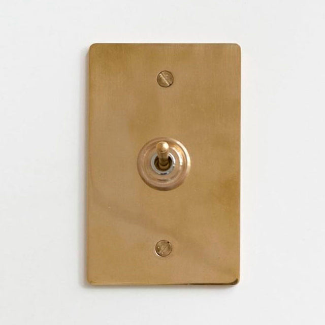 Brass Plate Switch