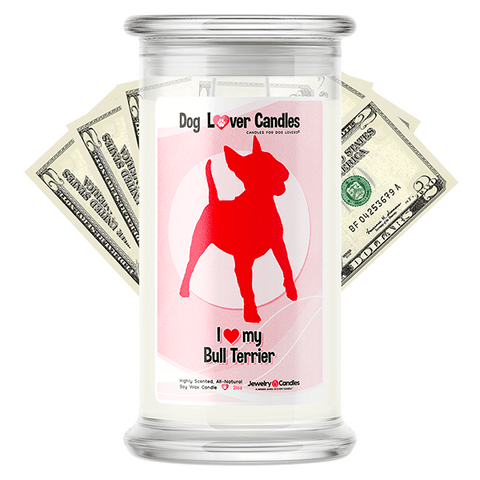 Bull Terrier Dog Lover Cash Candle