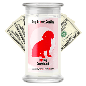 Dachshund Dog Lover Cash Candle