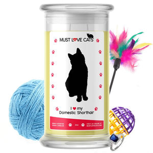 I Love My Domestic Shorthair | Must Love Cats® Candle-Must Love Cats® Candle-The Official Website of Jewelry Candles - Find Jewelry In Candles!