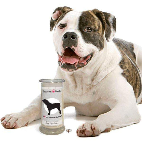I Love My American Bulldog! - Companion Candles-Companion Candles-The Official Website of Jewelry Candles - Find Jewelry In Candles!