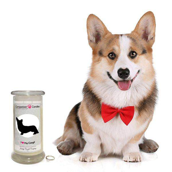 I Love My Corgi! - Companion Candles-Companion Candles-The Official Website of Jewelry Candles - Find Jewelry In Candles!
