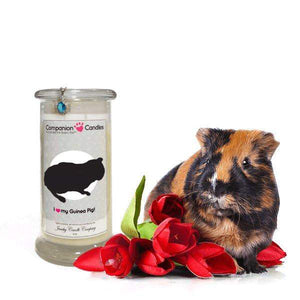 I Love My Guinea Pig! - Companion Candles-Companion Candles-The Official Website of Jewelry Candles - Find Jewelry In Candles!