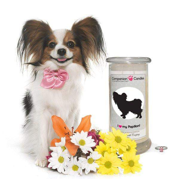 I Love My Papillon! - Companion Candles-Companion Candles-The Official Website of Jewelry Candles - Find Jewelry In Candles!
