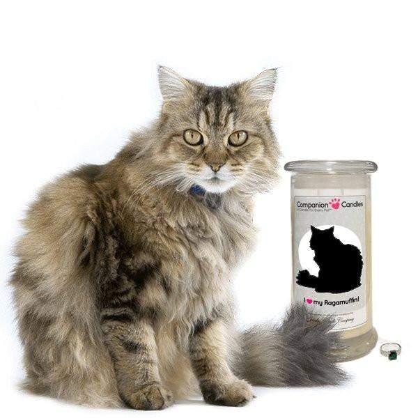 I Love My Ragamuffin! - Companion Candles-Companion Candles-The Official Website of Jewelry Candles - Find Jewelry In Candles!