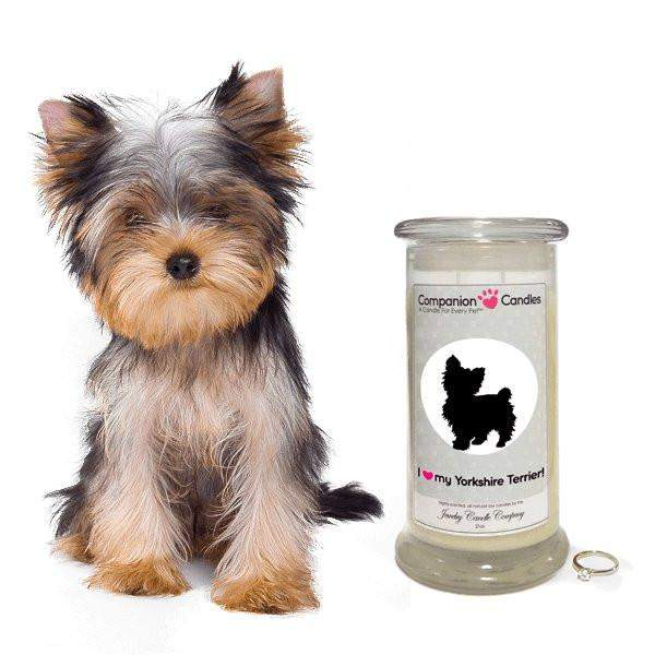 I Love My Yorkshire Terrier! - Companion Candles-Companion Candles-The Official Website of Jewelry Candles - Find Jewelry In Candles!