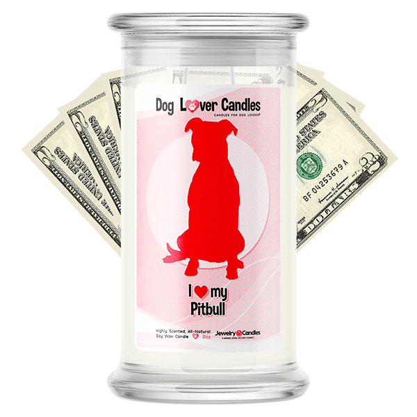 Pitbull Dog Lover Cash Candle