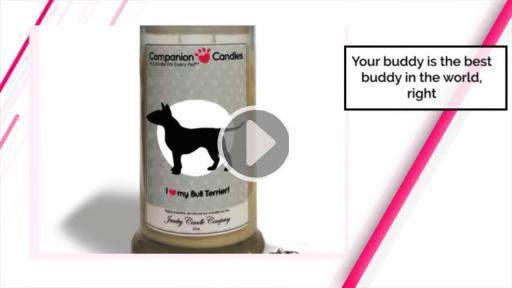 I Love My Bull Terrier! - Companion Candles-Companion Candles-The Official Website of Jewelry Candles - Find Jewelry In Candles!