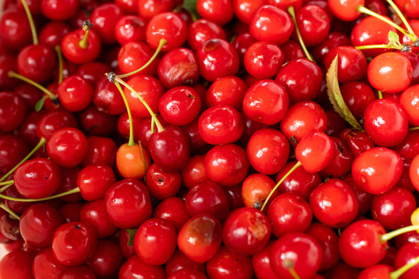 Foraged Cherries • Tj Turner