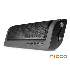 Ricco P18 2.0 Channel Aluminium Portable Travel Speaker with BUILT-IN BATTERY and SD MEMORY CARD READER