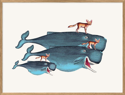 Whales and Desert Foxes