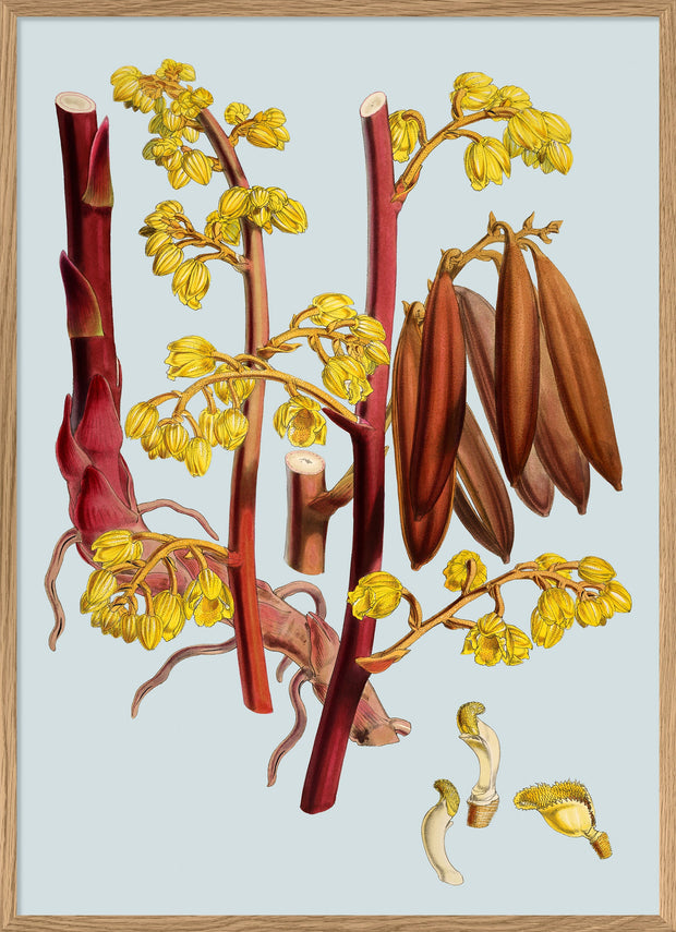 Red Branch With Yellow Flowers