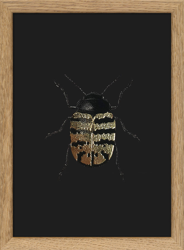 Golden Beetle (black) #9700