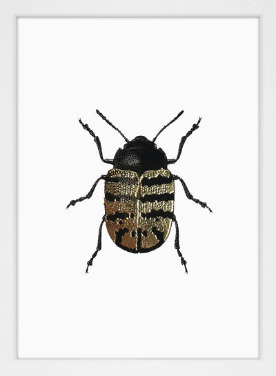 Golden Beetle (white) #9701