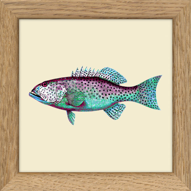 Fishes. Print #MS038